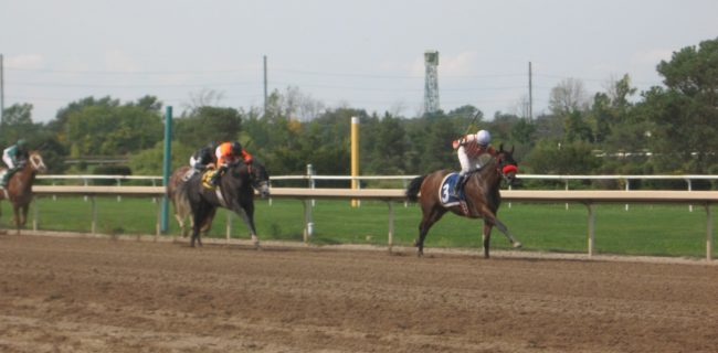 Photo of Fort Erie Racetrack