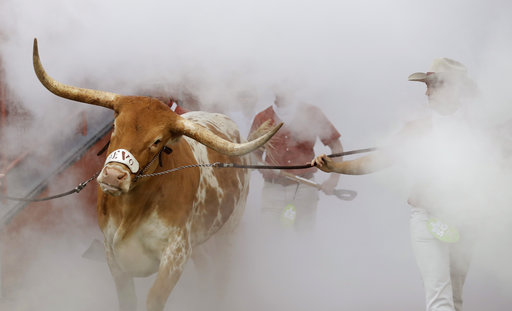 Wags Tribune: Longhorns, Bevo & Life in Austin, Texas